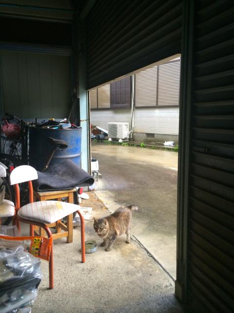 台風と雨戸と密室脱出。