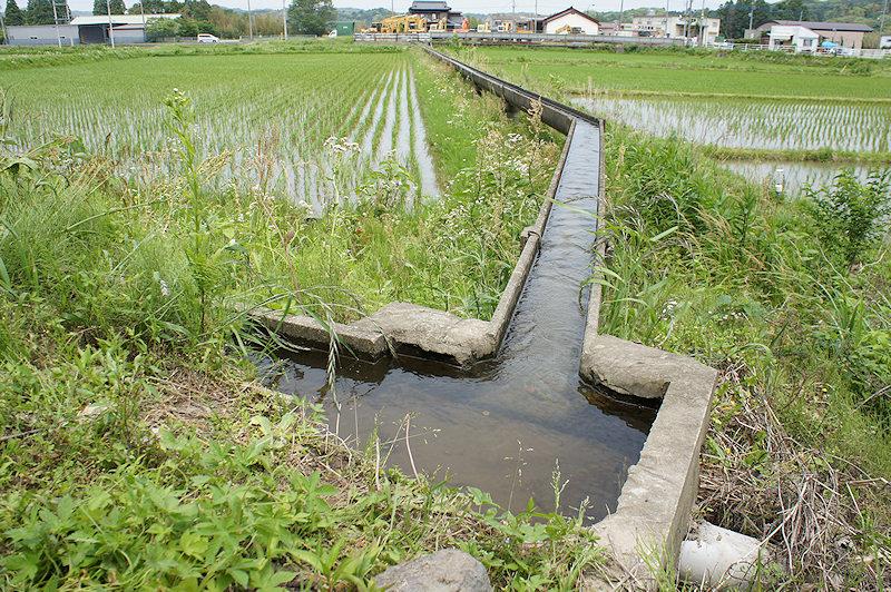 田んぼの水路の画像